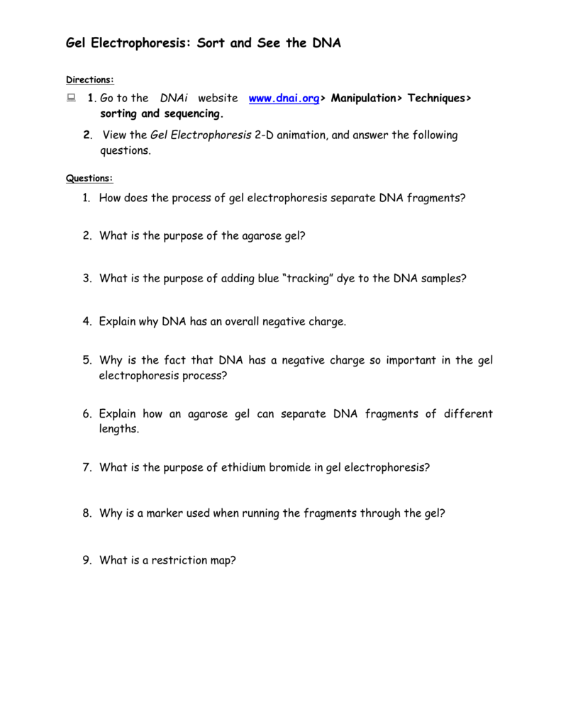 Uncategorized Gel Electrophoresis Worksheet gel electrophoresis sort and see the dna