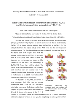Water Gas Shift Reaction Mechanism at Surfaces: Au, Cu - IFF-CSIC