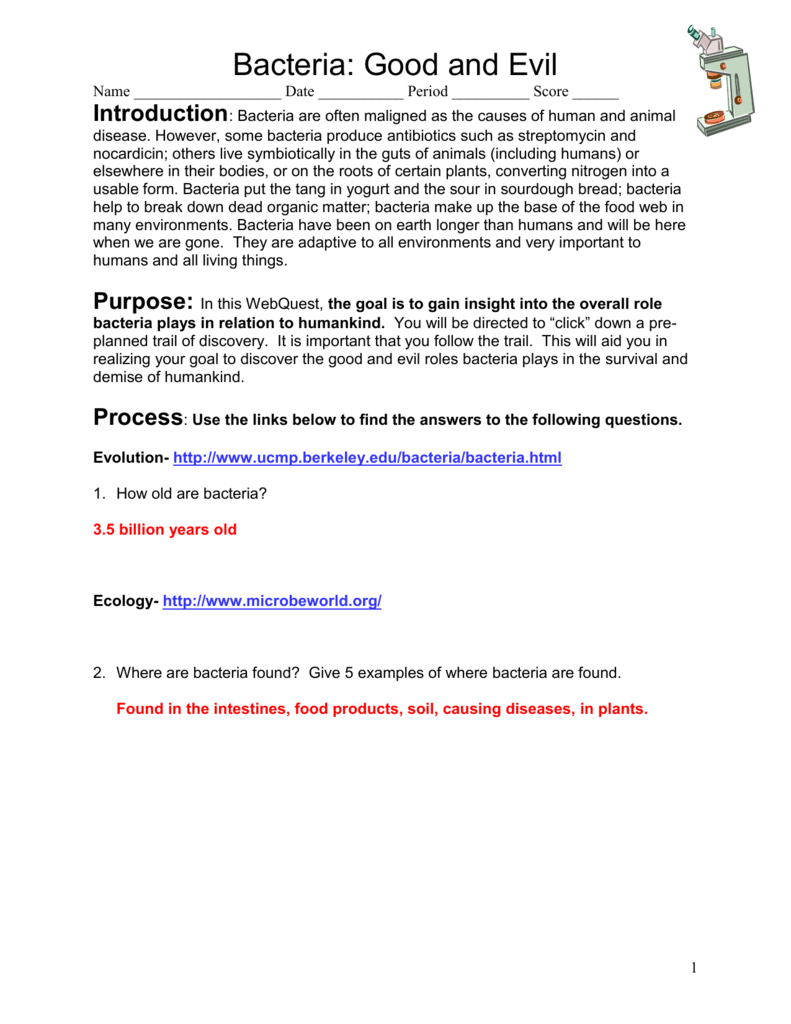 bacteria webquest answer key