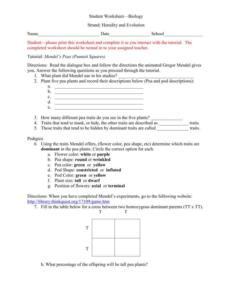 worksheet Gregor Mendel Worksheet heredity and evolution worksheets