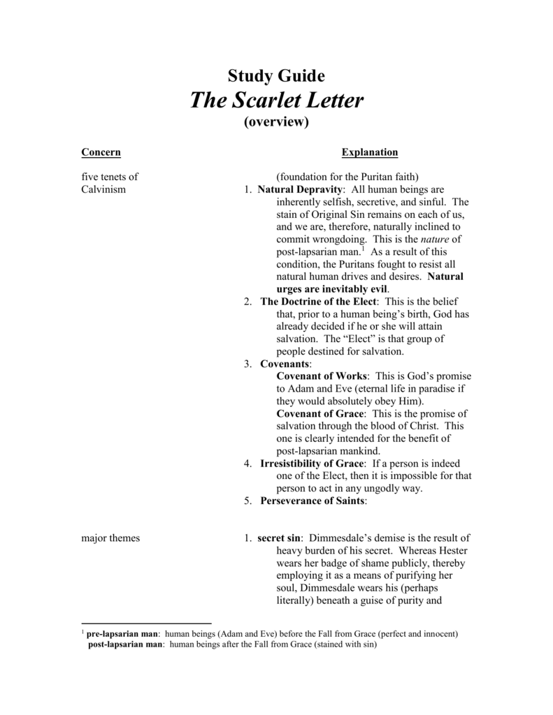 Study guide the scarlet letter buycottarizona