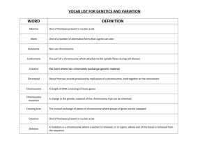 Vocab table - Genetics and variation teacher