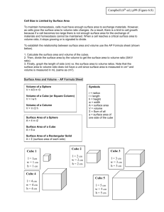 cell size worksheet ws volume surface area of cells 1415