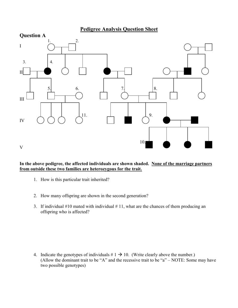 E Bio Worksheet Pedigree Analysis In Genetics - Worksheet List