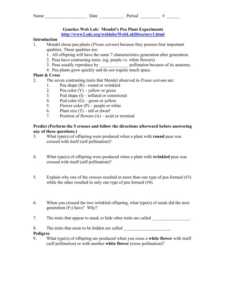 Workbooks Pollination Worksheets Free Printable Worksheets For