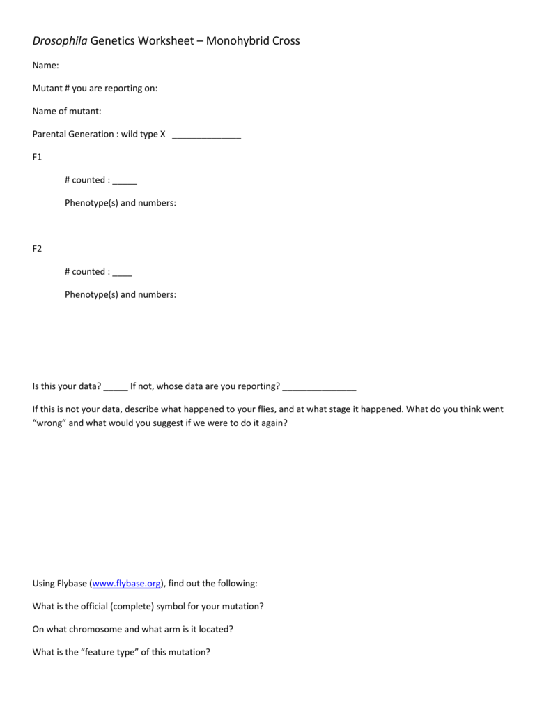 Drosophila Genetics Worksheet Monohybrid Cross – Monohybrid Cross Worksheet