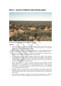 Acacia Forests and Woodlands - Department of the Environment