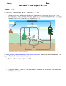 Nutrient Cycles - Deer Creek Schools