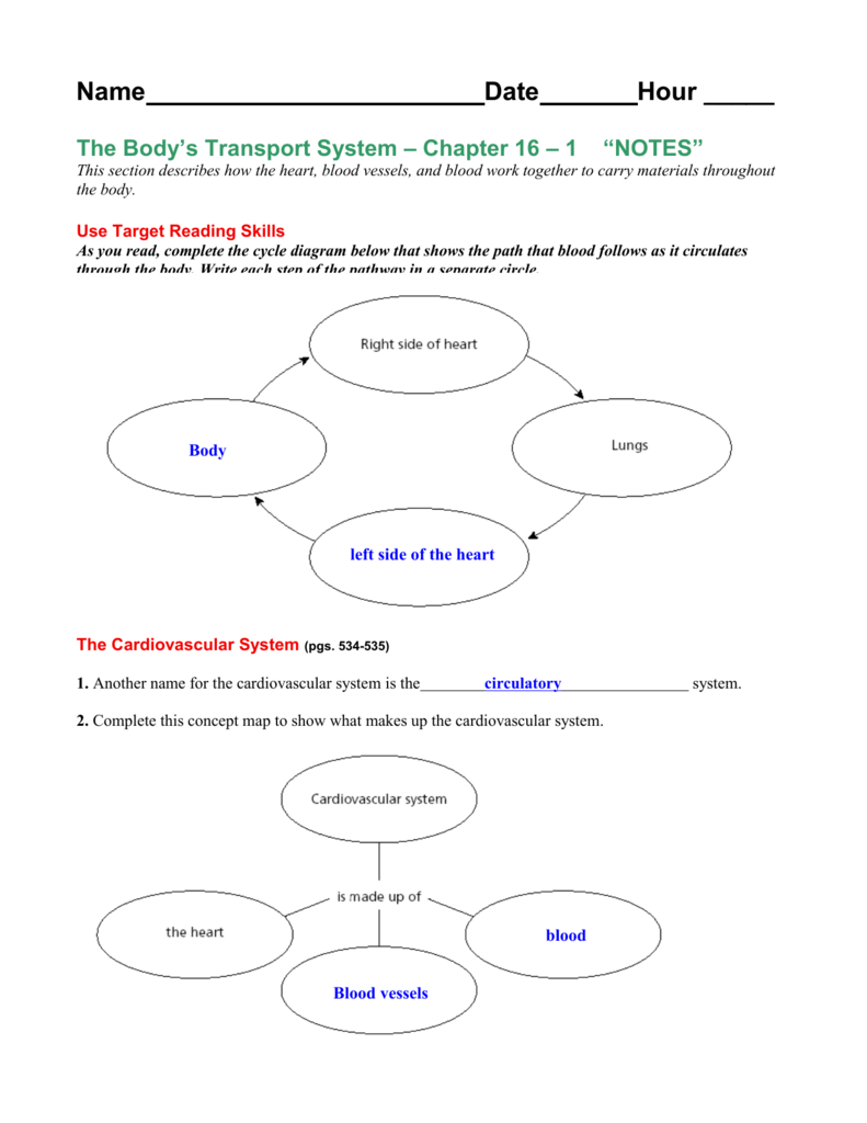 Blood Concept Map Worksheet Answer Key