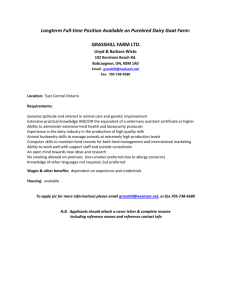 Longterm Full-time Position Available on Purebred