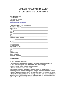 stud contract