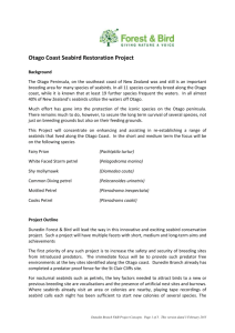 Otago Coast Seabird Restoration Project Background The Otago
