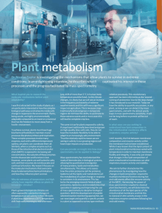 Plant Metabolism International Innovation