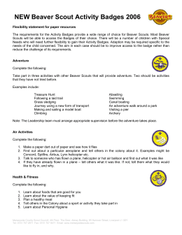 NEW Beaver Scout Activity Badges 2006