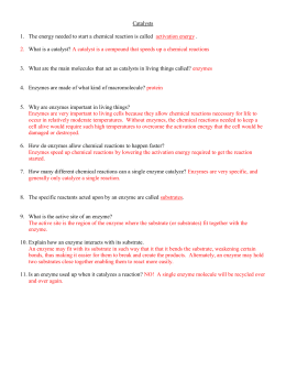 CP Biology Worksheet – Catalysts