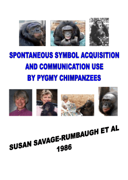 The Savage-Rumbaugh study Sarah