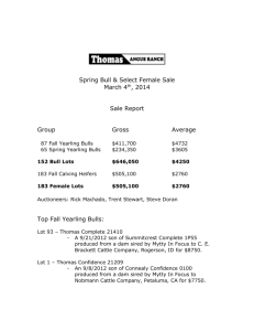 2014 Spring Sale - Thomas Angus Ranch
