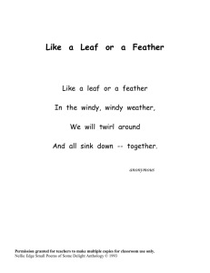 Like a Leaf or a Feather