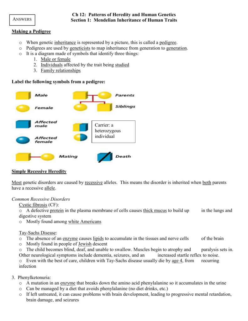 Ch 12 Patterns Of Heredity And Human Genetics