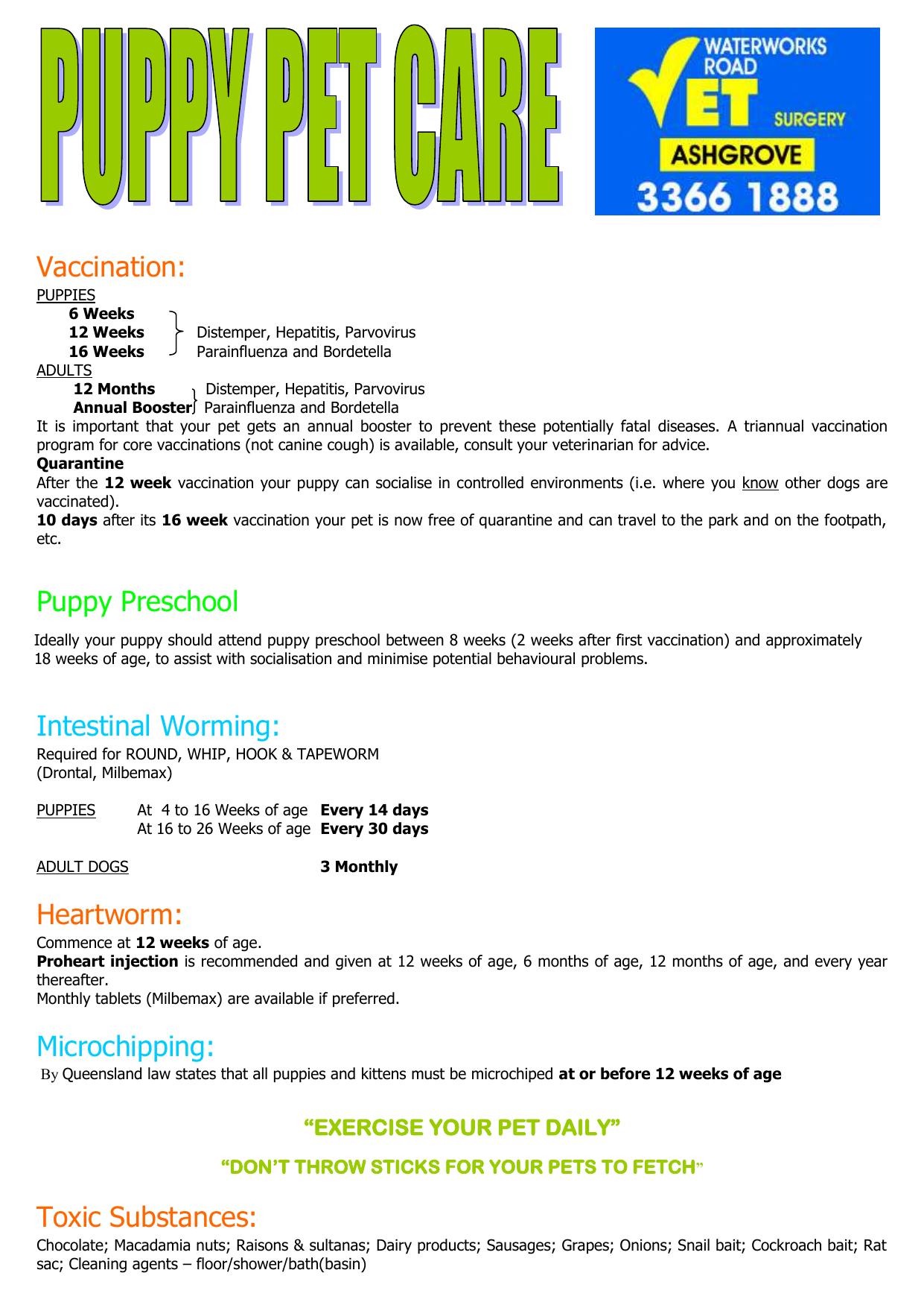 Puppy Pet Care Advice - Waterworks Road Vet Surgery