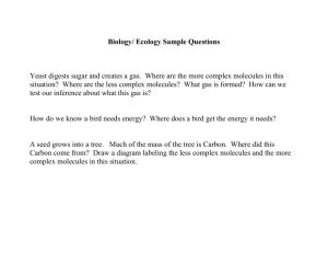 Biology/ Ecology Sample Questions