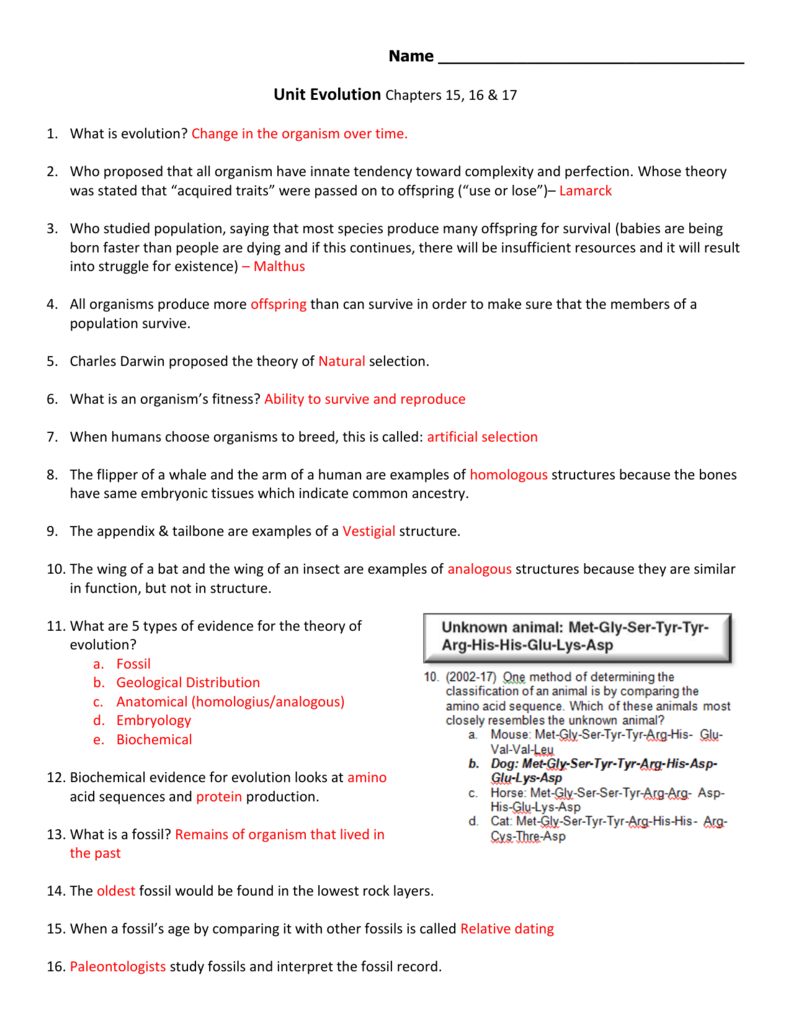 All Grade Worksheets Evidence Of Evolution Worksheet All Grade – Fossil Record Worksheet
