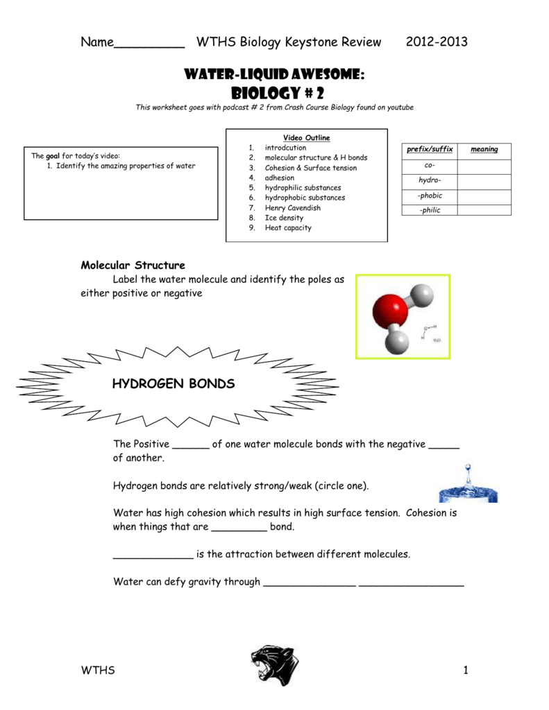 Worksheets Biological Molecules Worksheet biological molecules you are what eat
