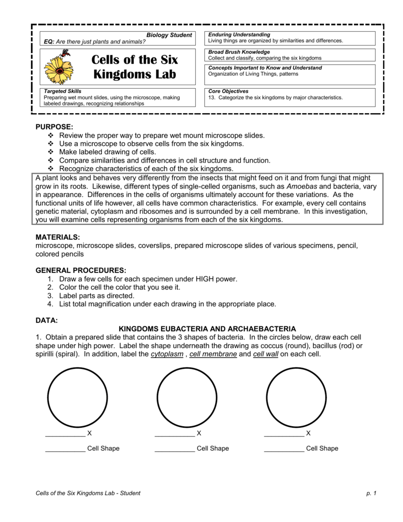 Worksheets 6 Kingdoms Worksheet cells of the 6 kingdoms