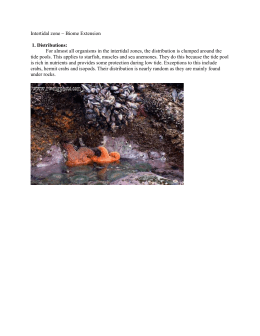 Intertidal zone ~ Biome Extension