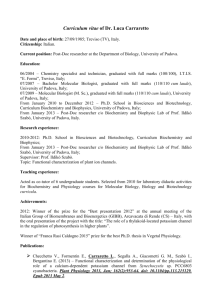 Curriculum vitae of Dr. Luca Carraretto Date and place of birth: 27/0