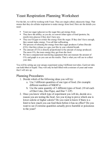 Yeast Respiration Planning Worksheet