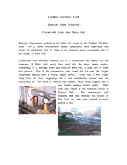 Subject: Observed Steam Condensate Leaks at the Northeast