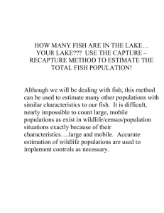 HOW MANY FISH ARE IN THE LAKE…