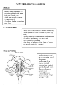 PLANT REPRODUCTION/ANATOMY