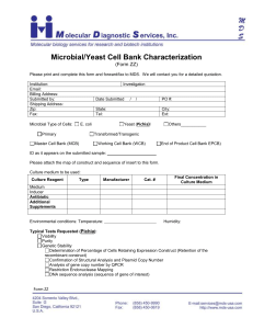 Microbial-Yeast Cell Bank Characterization Form (ZZ)