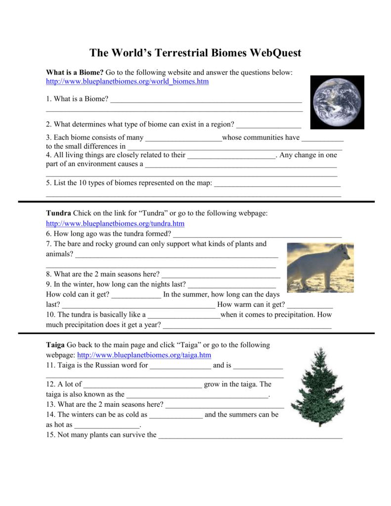 worksheet Terrestrial Biomes Worksheet terrestrial biomes webquest