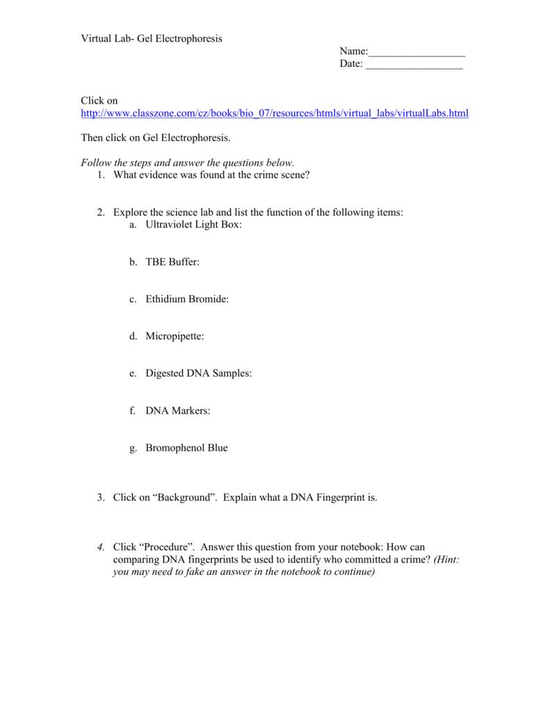 Worksheets Gel Electrophoresis Worksheet wow biolab gel electrophoresis
