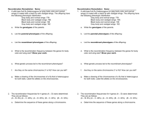Worksheet: Gene Recombination
