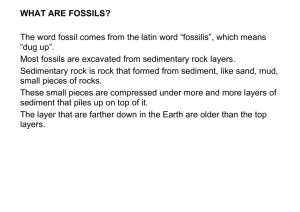 WHAT ARE FOSSILS? The word fossil comes from the latin word