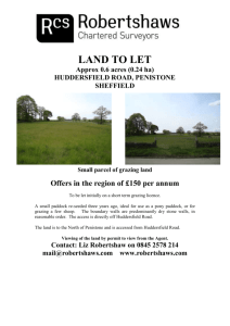 Land at Thick Hollins Moor