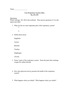Respiratory System Textbook Assignment
