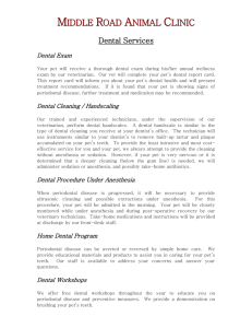 Dental Services - Middle Road Animal Clinic