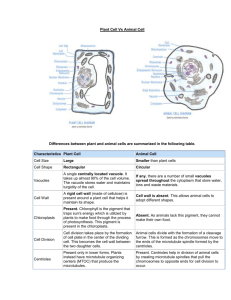 Name Comparing Plant And Animal Cells Directions Complete The