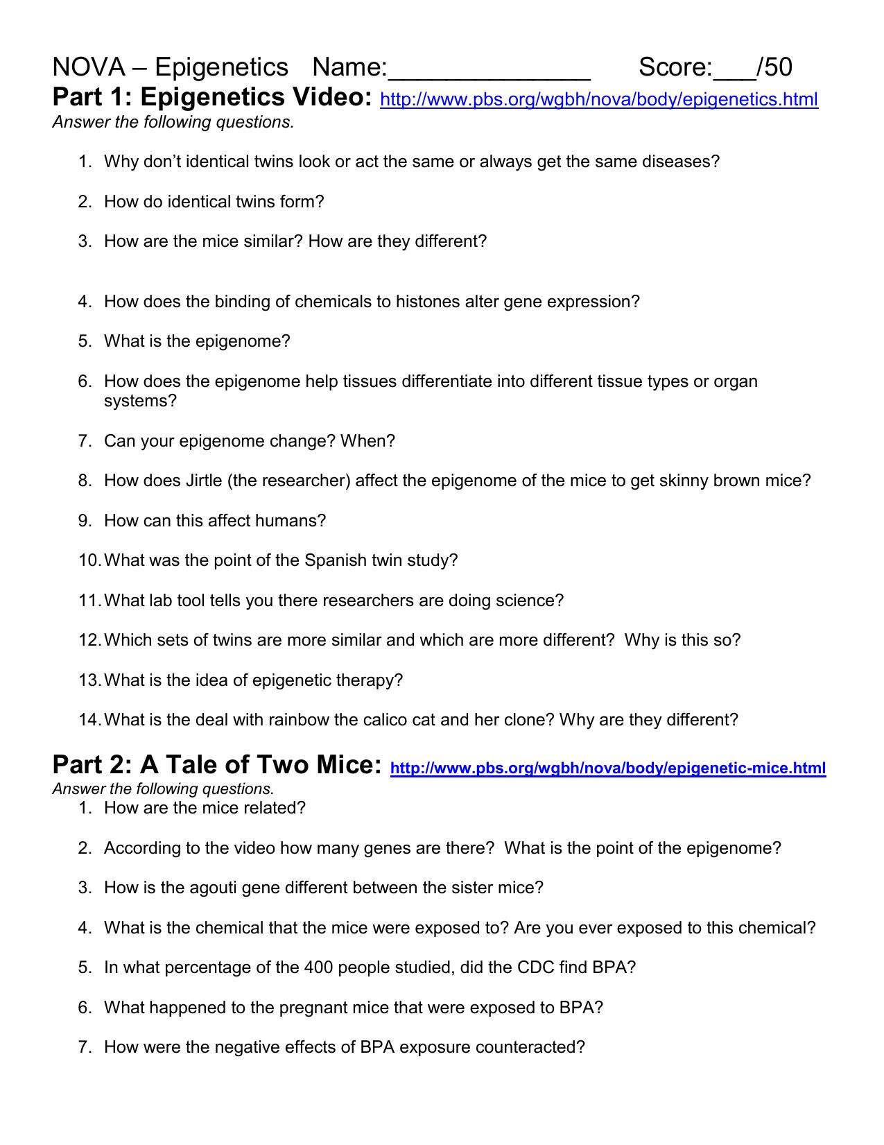 Worksheet Nova How Does The Brain Work Worksheet Carlos Lomas