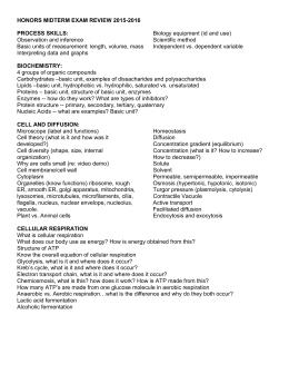 Essay format toefl