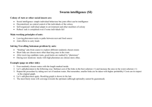 Swarm Intelligence (TSP example)