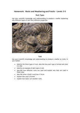Mid-Topic Test: Topic 8, Weathering and Fossils – Levels 3–5