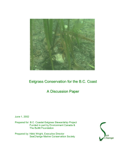 Eelgrass Conservation for the BC Coast