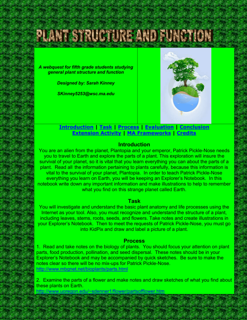 A webquest for fifth grade students studying general plant structure