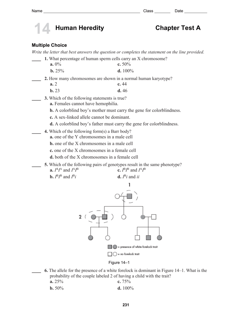 worksheet Section 14 2 Human Chromosomes Worksheet Answers 3687317 mlbio10 ch14 testa 3rd indd